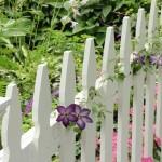 Thiết kế hàng rào Thẫm mỹ – An toàn – Phong thủy