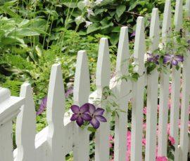 Thiết kế hàng rào Thẫm mỹ - An toàn - Phong thủy